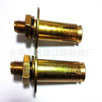 厂家直销电梯膨胀螺栓 电梯壁虎 高品质 低价格m16*120欢迎选购