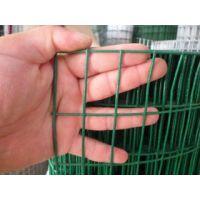 供应鸿宇筛网浸塑电焊网
