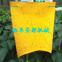 茶园专用双面诱虫黄板 圣邦供应绿色环保无污染粘虫板
