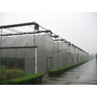 陕西大面积花卉、蔬菜种植用膜连栋温室建设