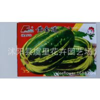 庭院阳台盆栽蔬菜瓜果种子 四季甜瓜 黄金道香瓜种子易种植