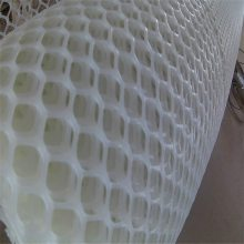 华宇塑料平网 鱼业养殖网 植物养殖网