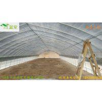 东莞大棚供应商-蔬菜种植大棚-新型大棚造价