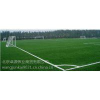 北京假草坪哪里有卖的供应北京人工草坪批发厂家直销