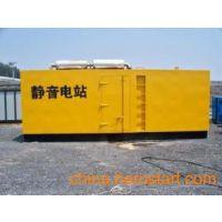 潍坊租赁发电机13521149806专业供应