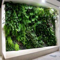 仿真植物墙绿植仿真草坪绿色假草皮塑料尤加利背景室内壁挂装饰 优嘉工艺品