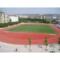 郑州枫林园艺厂家大量供应足球场专用草坪 人造草皮 跑道仿生草坪