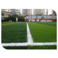 时宽人造草皮人工草皮仿真草坪假草坪塑料草皮厂家直销运动足球场草坪