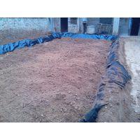 出售养鱼塘养殖塑料布防渗漏专用防渗布 浅水莲藕地膜种植技术价格/泥鳅养殖塑料薄膜