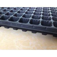 批发育苗盘、穴盘(128穴)1.0 长方形花卉种植大塑料 厂家直销