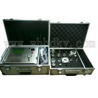 HKWS-3000A SF6微水测量仪(华电科仪)