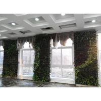 武汉植物墙造价|宜昌植物墙|植物墙智能浇灌系统