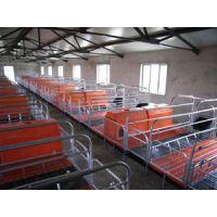 山东养猪设备母猪产床2.1*3.6定位栏仔猪保育各种食槽情咨询泊头福临养猪设备厂