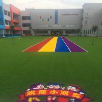 彩虹幼儿园仿真草人工草皮 时宽运动跑道人造草坪 休闲装饰假草坪