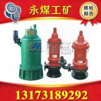 BQS(BQW)系列矿用污水排沙泵  15KW防爆不锈钢污水潜水泵商机