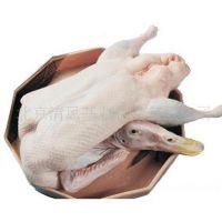 供应批发黑棕鹅春冠法式大鹅肝进口鹅掌进口鹅翅进口鹅头