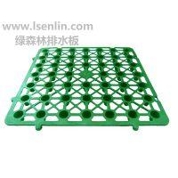 供应绿森林 塑料蓄排水板(410×410×30mm)