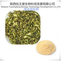 HPLC检测98%天然健康槐米提取物槲皮素