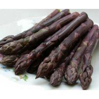 美国进口紫色激情-紫芦笋种子