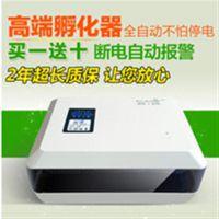 孵化器配件|广河县孵化器|泰山孵化机(在线咨询)