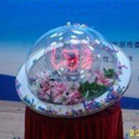 深圳飞剑供应亚克力启动球亚克力圆球透明圆球