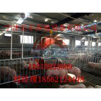 猪场料线生产厂家哪家好 正丰养殖设备有限公司