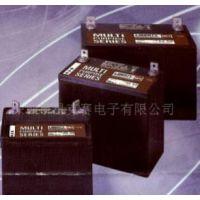 大力神蓄电池总代理