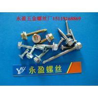 中山螺丝生产厂家不锈钢钻尾螺钉-扁头自钻尾螺丝-带胶圈自攻螺钉