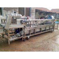 供应豪联牌HLXC-4000型香椿加工生产线全自动清洗风干杀菌一体化设备