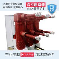 申恒电力VS1-12户内的高压的真空的断路器