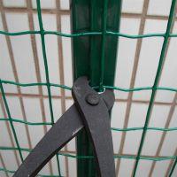 供应山东电焊网厂家【圈地网】铁丝网围栏网