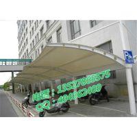 供应大型膜结构停车棚 雨棚制作
