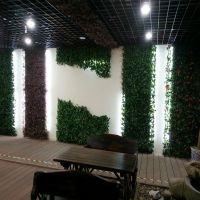 梦幻城堡壁挂仿真植物假花藤条绿叶装饰葡萄藤蔓垂吊绿植墙塑料树叶子绿萝