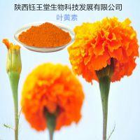 陕西钰王堂保护视力万寿菊提取HPLC检测10%叶黄素