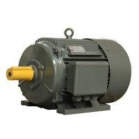 供应YZTD180塔机电机|24KW塔机电机|江特三速三相异步电动机