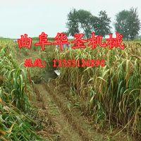 手扶式谷子割晒机 多用芦苇收割机 牧草辣椒柴油收割机