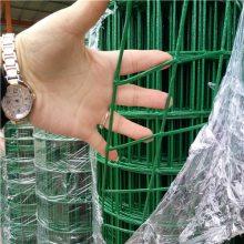 现货荷兰网 立柱 养殖围栏网 绿色铁丝网