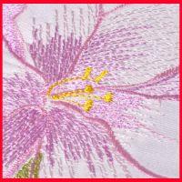 【量大从优】欧根纱真丝绣花 全棉镂空绣花布 质优价廉B
