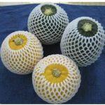 专业供应多用途环保水果网套 机械设备保护网 各类规格网套