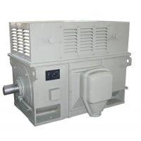 Y560-8 630KW 10KV电机