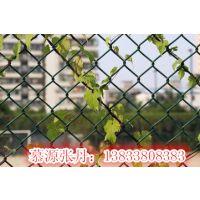 城市道路防护网,13833808383慕源张丹优质供应