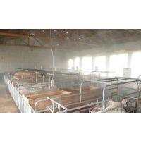 畜牧业猪牛羊养殖场自动喷雾降温消毒除臭设备批发