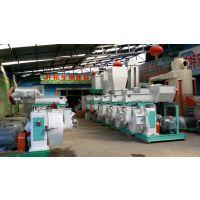 流水线颗粒机产量和价格/流水线配置颗粒机/成套颗粒生产线图片