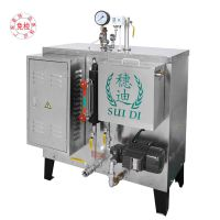 穗迪厂家直销70KG燃气蒸汽发生器用于医院器具消毒服装厂整烫锅炉