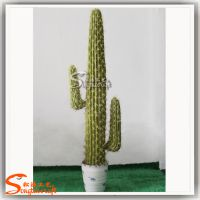 供应人造植物 室内外盆栽式仙人棒 仿真墨西哥仙人柱