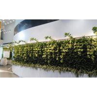 武汉植物墙公司,植物墙工艺,宜昌植物墙