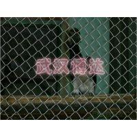 动物园浸塑钢材防护栏@防止动物伤人隔离网@生态动物园旅客人身安全围栏网