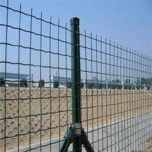 抗老化围栏网 浸塑围栏网 方形孔铁丝网