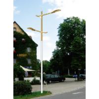 云南丽江乡村建设太阳能路灯 飞鸟厂家批发LED太阳能路灯,