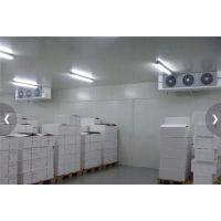 珠海蔬菜冷库安装、广州捷迅(图)、100平方蔬菜冷库安装